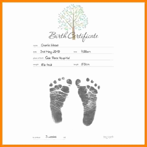 Home Birth Certificate Template Elegant Certificate Template Google Docs – Printable Receipt Template