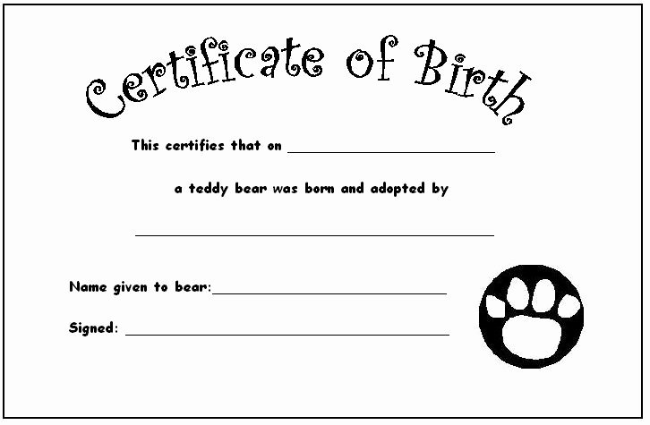 Home Birth Certificate Template Elegant Your Teddy's Certificate Of Birth