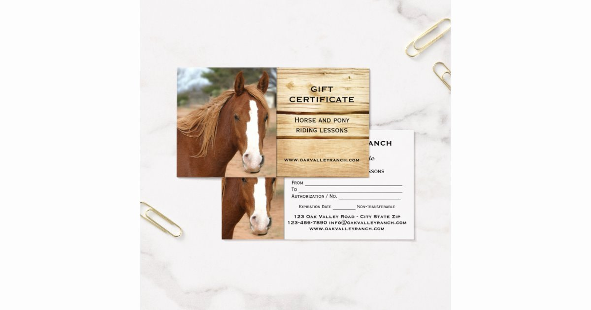 Horseback Riding Gift Certificate Template Luxury Horse Riding Lessons Gift Certificate Template