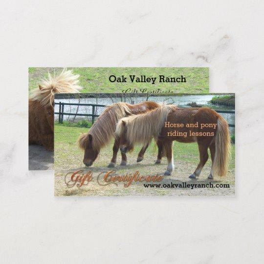 Horseback Riding Gift Certificate Template Luxury Horse Riding Lessons Gift Certificate Template