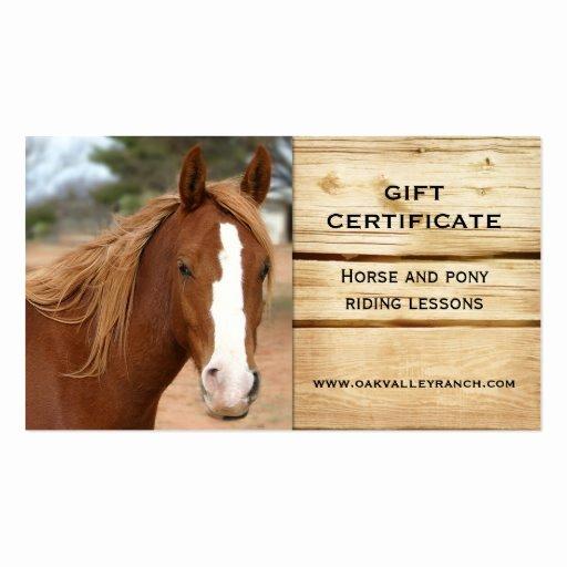 Horseback Riding Gift Certificate Template New Horse Riding Lessons Gift Certificate Template Business