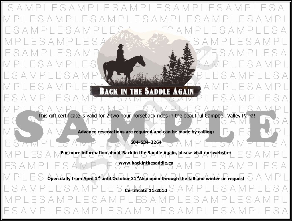 Horseback Riding Lesson Gift Certificate Template Elegant Back In the Saddle Horseback Riding In Langley Bc 604