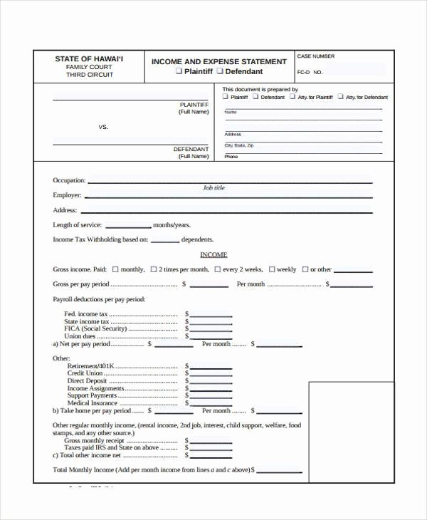 Income and Expense form Luxury Free 7 Sample Expense Statement forms In Pdf
