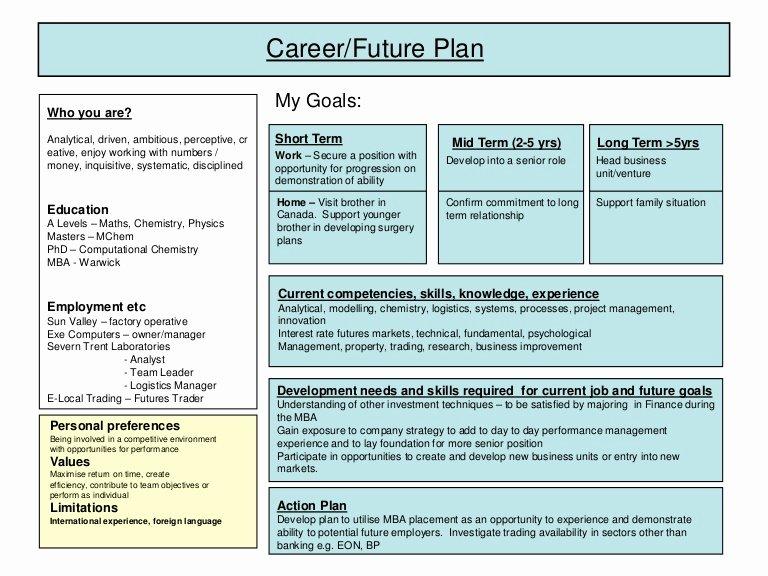 Individual Professional Development Plan Samples Elegant Career Plan Example