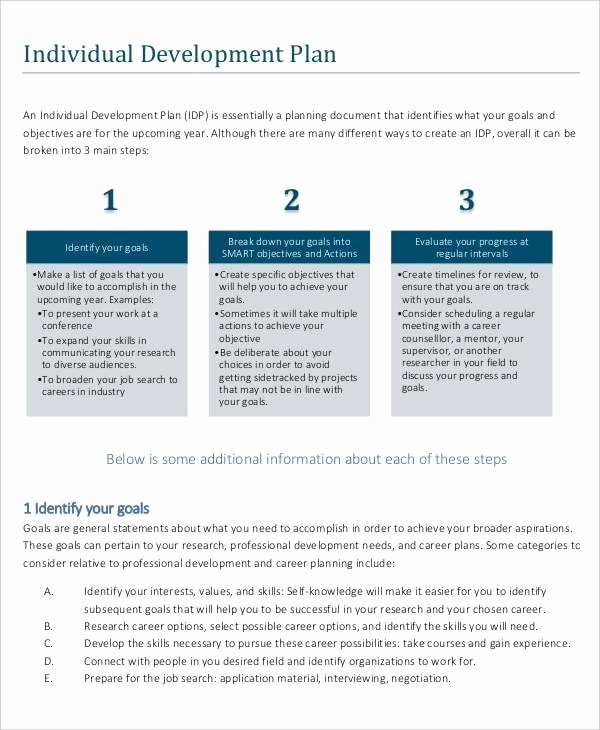 Individual Professional Development Plan Samples Fresh 12 Career Development Plan Examples Pdf Word