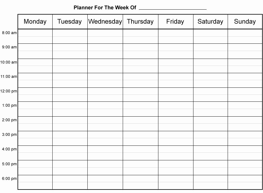 Insolvency Letter to Creditors Template New 30 Hourly Weekly Planner