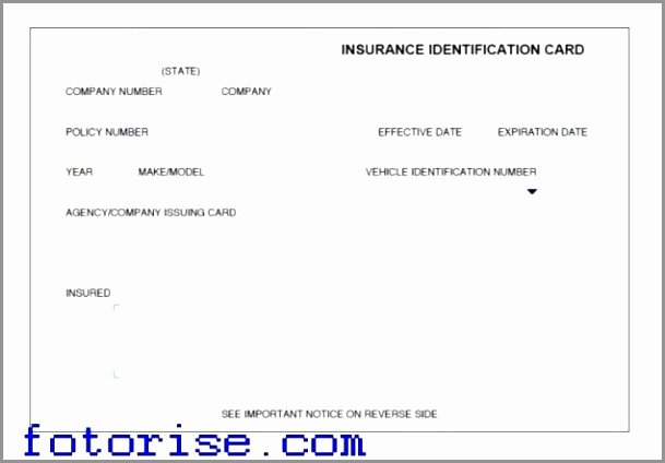 Insurance Card Template Word Awesome Free Fake Auto Insurance Card Template Example Free Fake