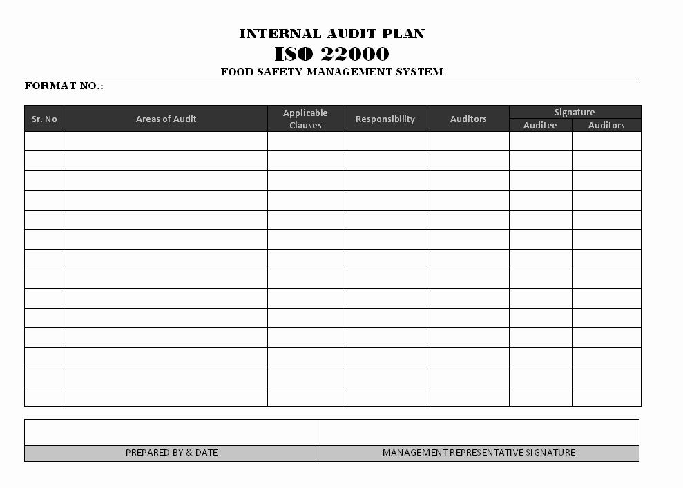 Internal Audit Checklist Template Excel Inspirational Internal Audit Plan iso