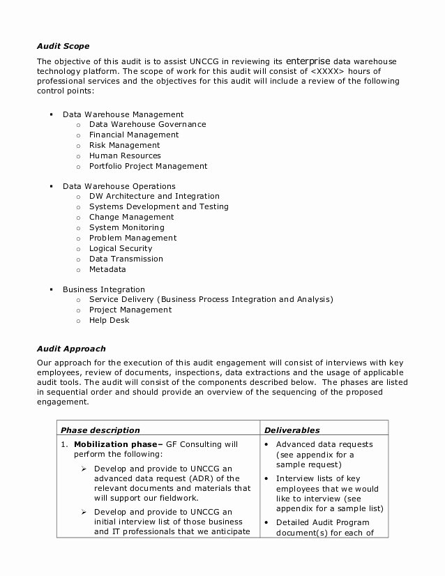 Internal Business Proposal Examples Lovely Sample Audit Plan
