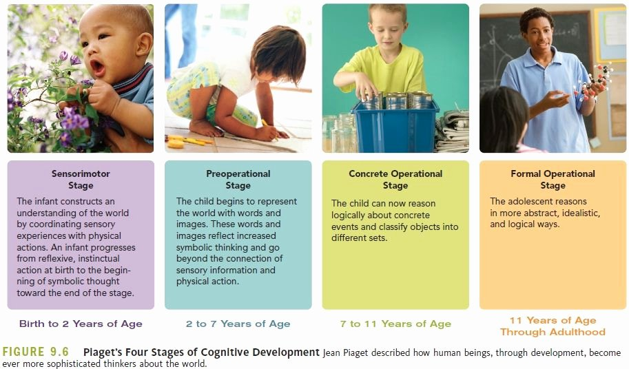 Jean Piaget's Stages Of Cognitive Development Chart Inspirational Pia S Four Stages Sensorimotor Object Permanence