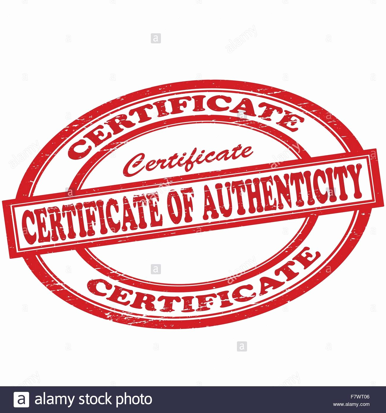 Jewelry Certificate Of Authenticity Template Unique Certificate Authenticity Stock S & Certificate