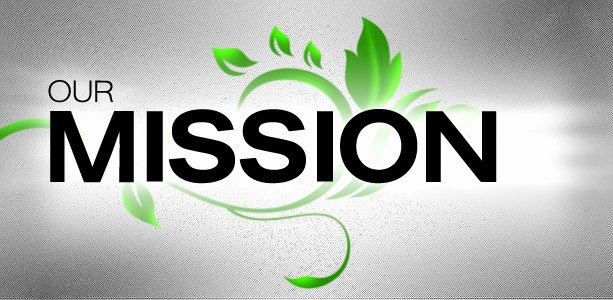 Life Time Fitness Mission Statement Fresh Mission Statement – Lupus Fighters Of America Foundation