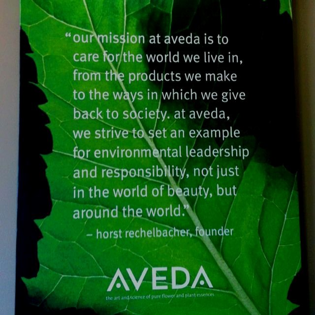 Lifetime Fitness Mission and Vision Statement Luxury Aveda S Mission Statement Cosmetology