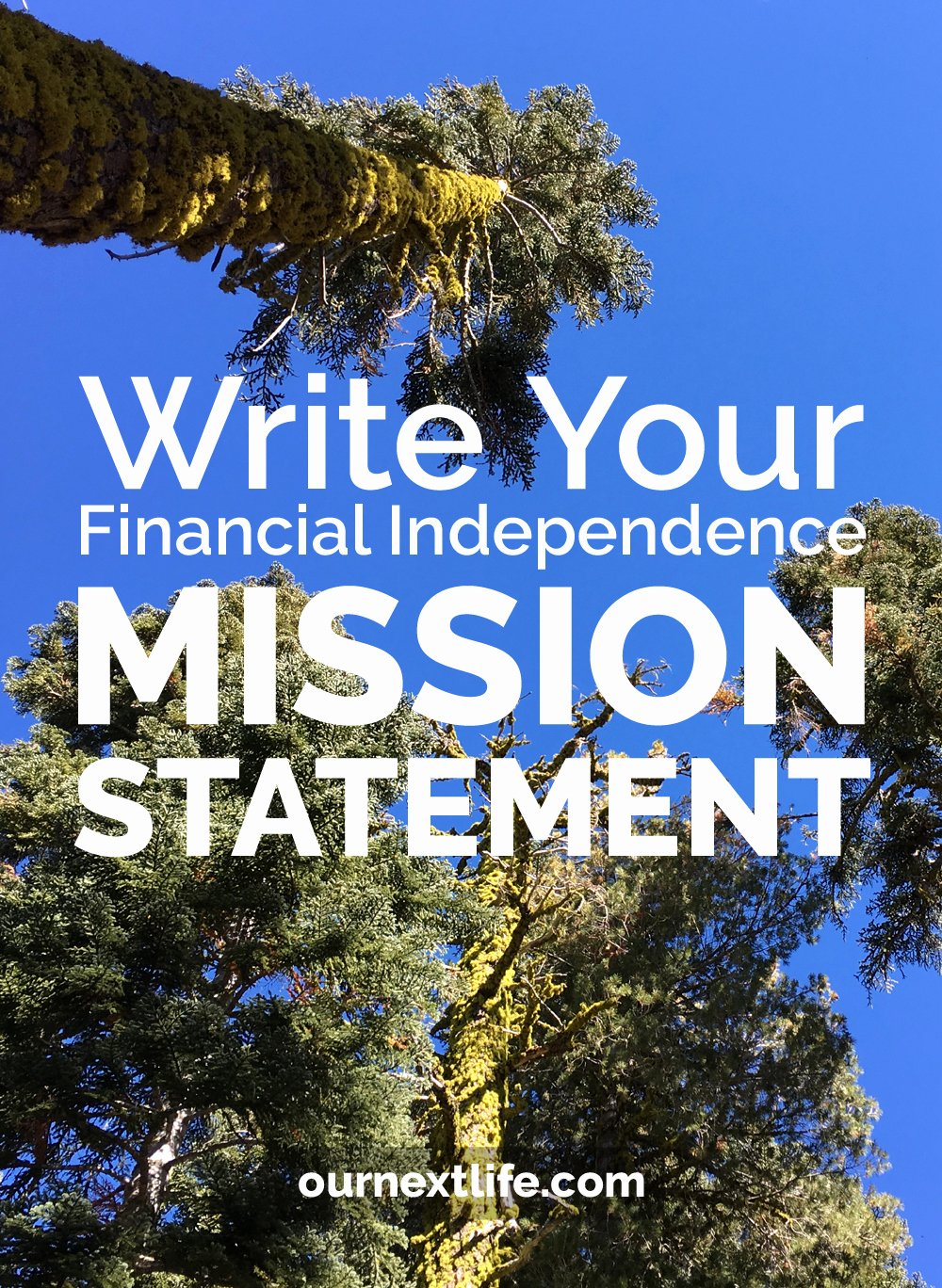 Lifetimes Mission Statement Fresh Write Your Financial Independence Mission Statement