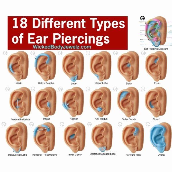 Lip Piercing Pain Chart Awesome 18 Different Types Of Ear Piercings by Wickedbodyjewelz On