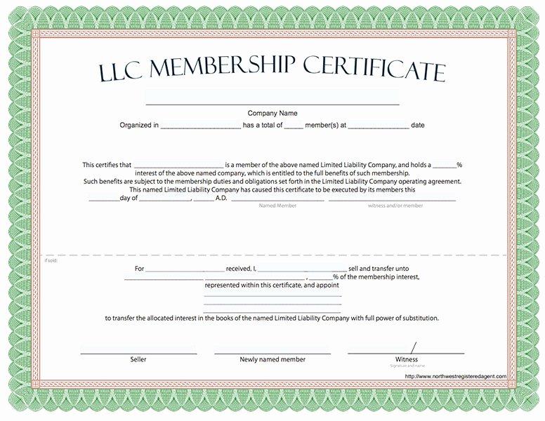 Llc Member Certificate Template Beautiful Llc Membership Certificate Free Limited Liability