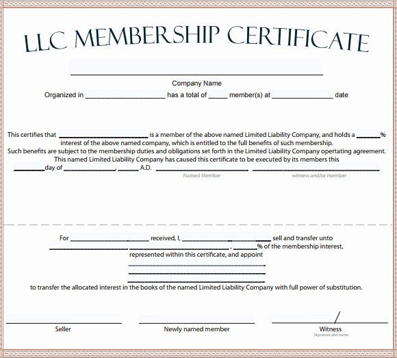 Llc Member Certificate Template Luxury Free 14 Membership Certificate Templates In Samples