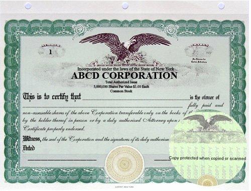 Llc Member Certificate Template New Sample Llc Membership Ledger Pdf Dorothy Graves