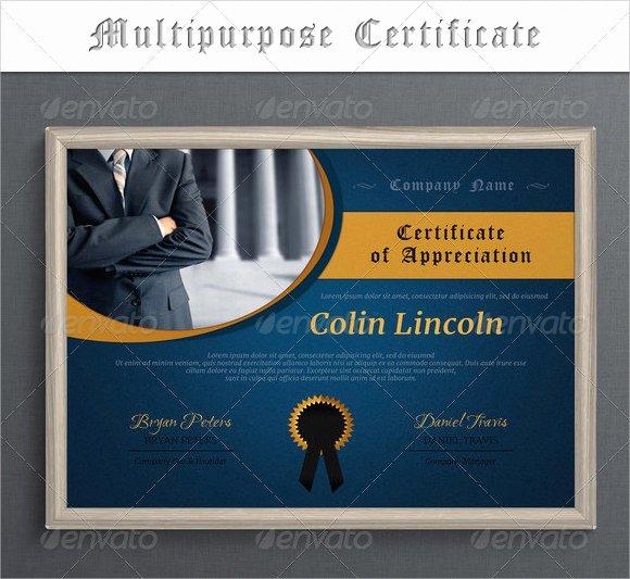 Llc Membership Certificate Template Free Inspirational Free 14 Membership Certificate Templates In Samples