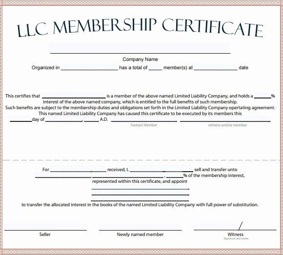 Llc Membership Certificate Template Free Unique Free 14 Membership Certificate Templates In Samples