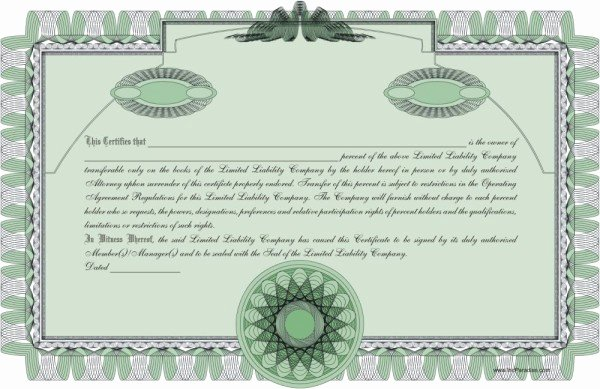 Llc Membership Certificate Template Luxury Pany Minutes