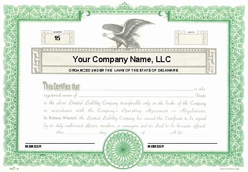 Llc Membership Certificate Template Word Elegant Custom Printed Certificates Limited Liability Pany