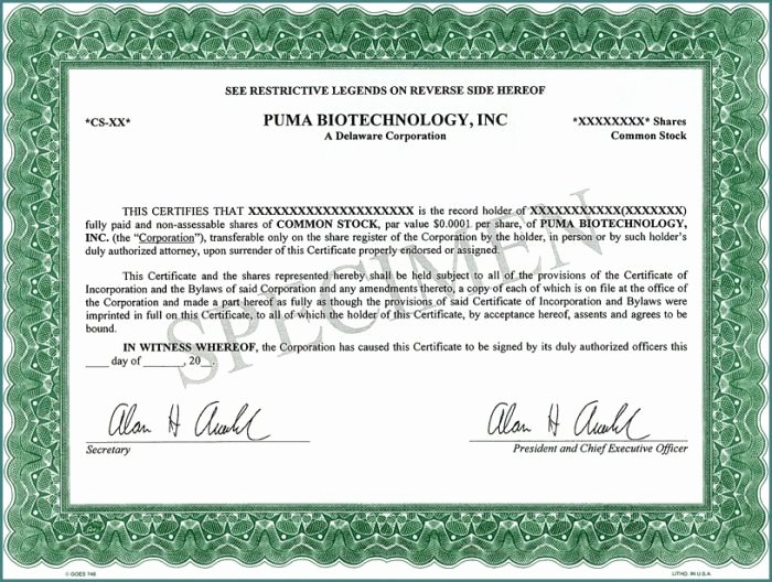 Llc Share Certificate Template Best Of How to form A 501c3 Corporation form Resume Examples