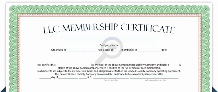 Llc Share Certificate Template Inspirational Llc Membership Certificate Free Limited Liability