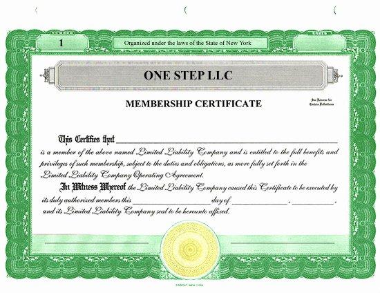 Llc Share Certificate Template New Custom Stock Certificates