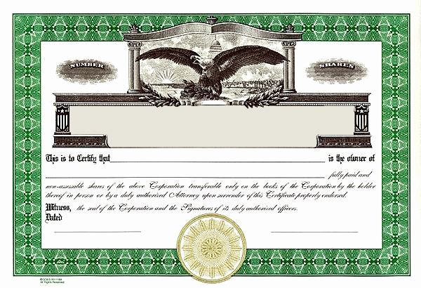 Llc Stock Certificate Template Beautiful Stock Certificates Llc Certificates Certificates