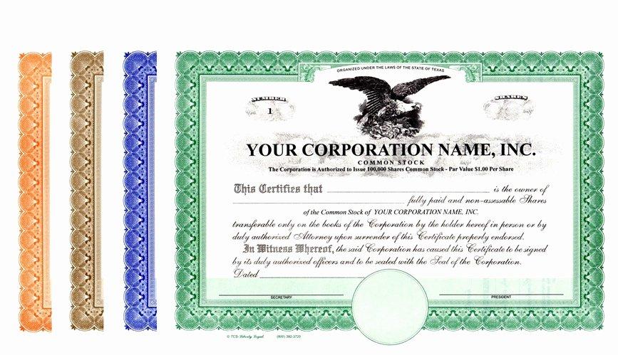 Llc Stock Certificate Template Best Of Corporation Stock Certificates
