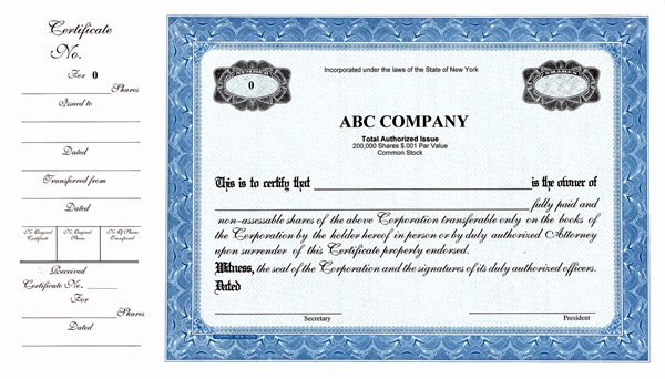 Llc Stock Certificate Template Luxury Stock Certificates Custom Stock Certificates Custom