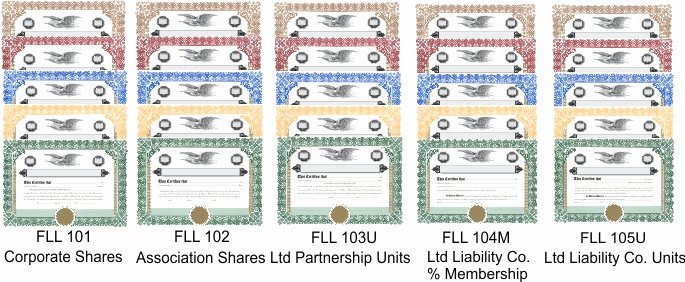 Llc Stock Certificate Template New 20 Generic Stock Certificates & Blank Stub Sheets 5
