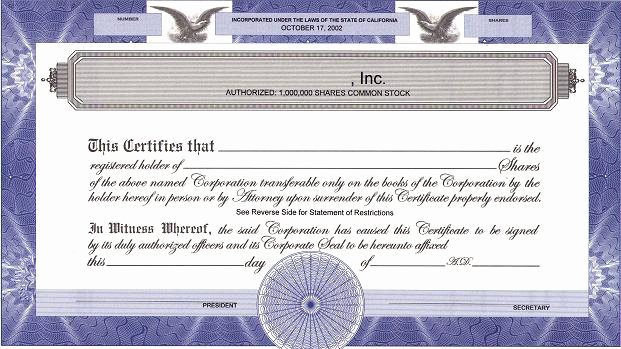 Llc Stock Certificate Template New How Many S to Authorize and issue
