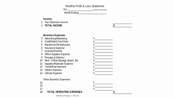 Loss Of Income form Beautiful Sample Profit and Loss Statement form 8 Free Documents