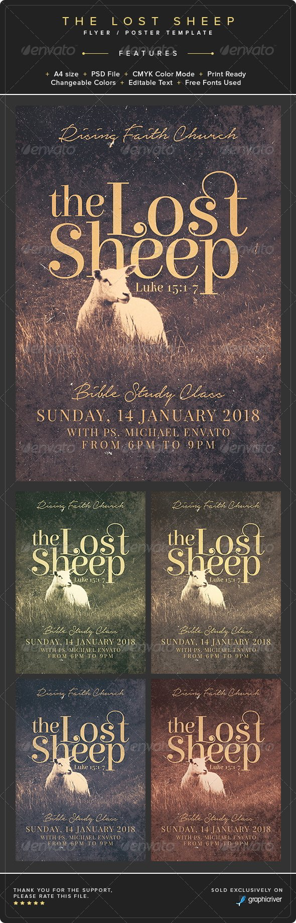 Lost Pet Template Google Docs Best Of the Lost Sheep Flyer Poster Template
