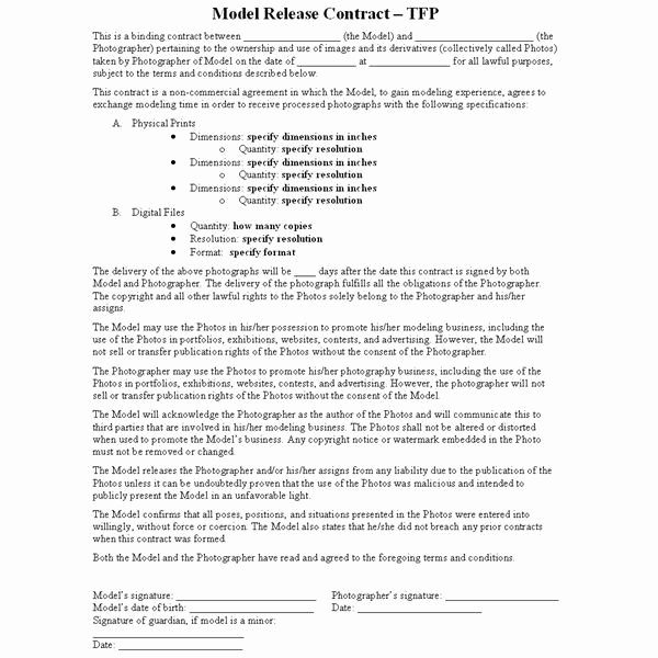 """Makeup Artist Contract Pdf Inspirational This Photography Article Describes the Tfp """"time for"""