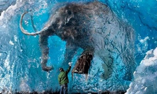 "Mammoth P Free Sample Luxury Arctic Mammoth Graveyard ""hundreds Of Thousands Of Animals"