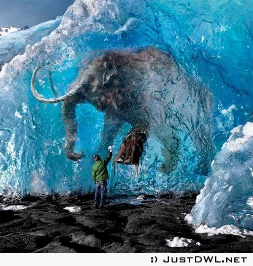 Mammoth P Free Sample Unique Pinterest • the World's Catalog Of Ideas