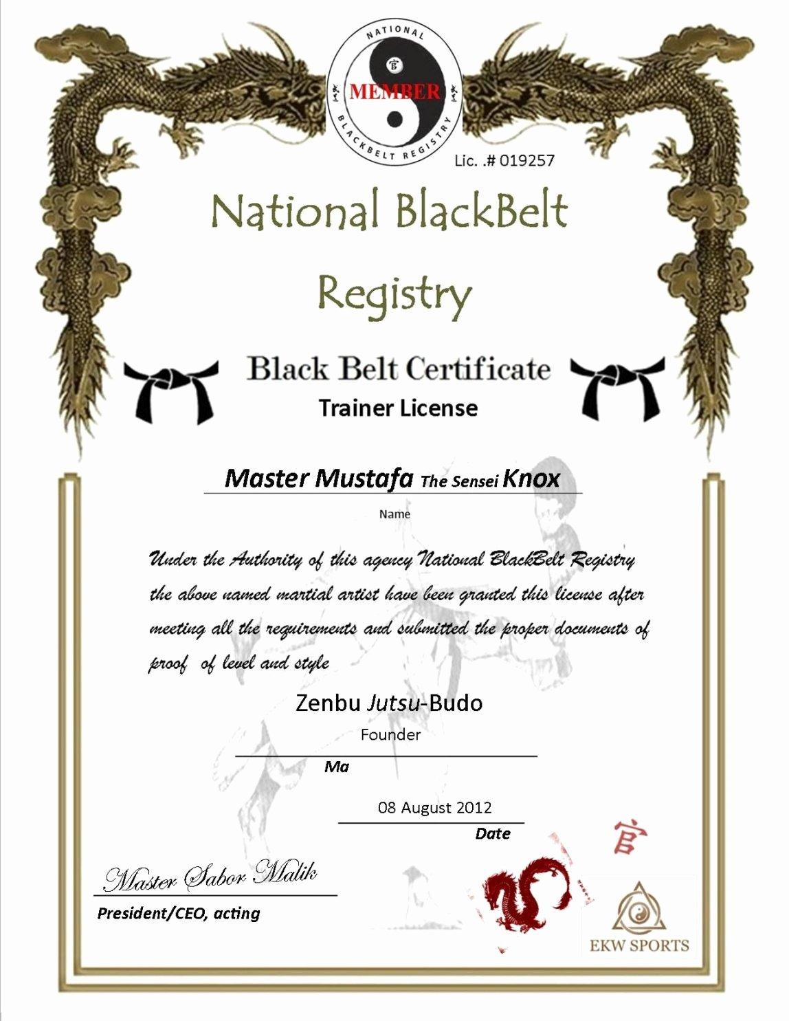 Martial Arts Certificate Creator Program Best Of Karate Certificate Template