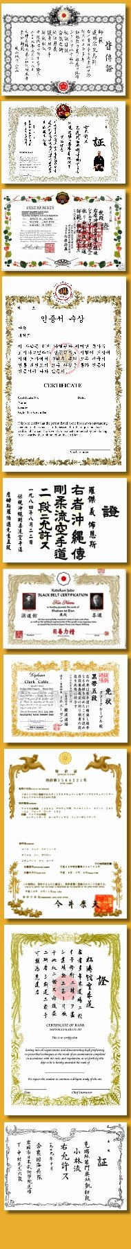 Martial Arts Certificate Creator Program Inspirational Martial Arts Certificates for Your School or organization