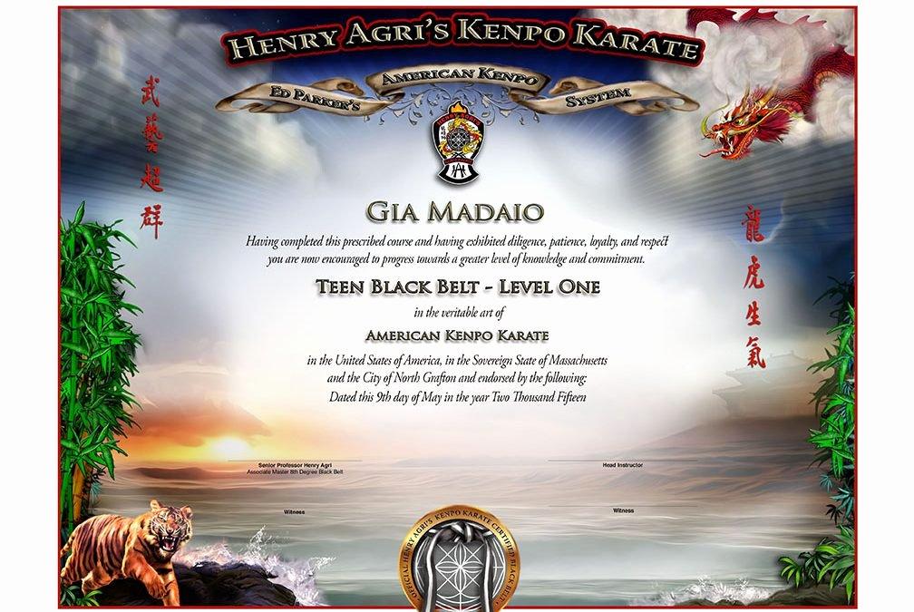 Martial Arts Certificate Creator Program Lovely Martial Arts Certificate Archives Martial Arts Certificates