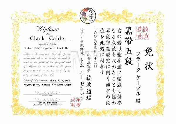 Martial Arts Certificate Maker Best Of 15 Luxury Martial Arts Certificate Templates Maotme Life