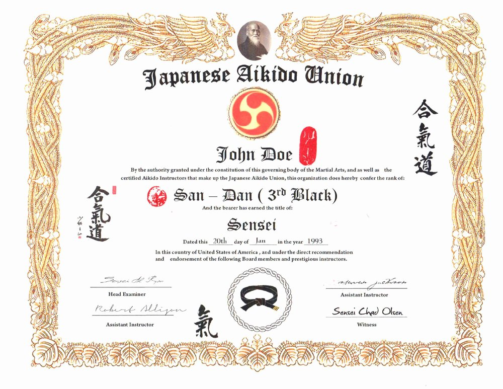 Martial Arts Certificate Template Best Of Aikido 11 X 14 Custom Certificate