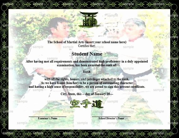 Martial Arts Certificate Template Fresh Sparring Martial Arts Karate Rank Belt Certificate