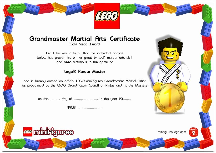 Martial Arts Certificates Free Fresh Lego Minifigures Line Games Hobbylane