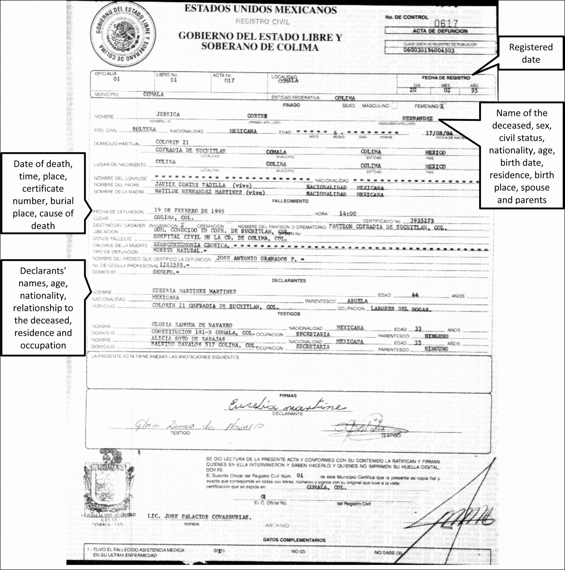 Mexican Birth Certificate Template Beautiful Translation Divorce Certificate Template
