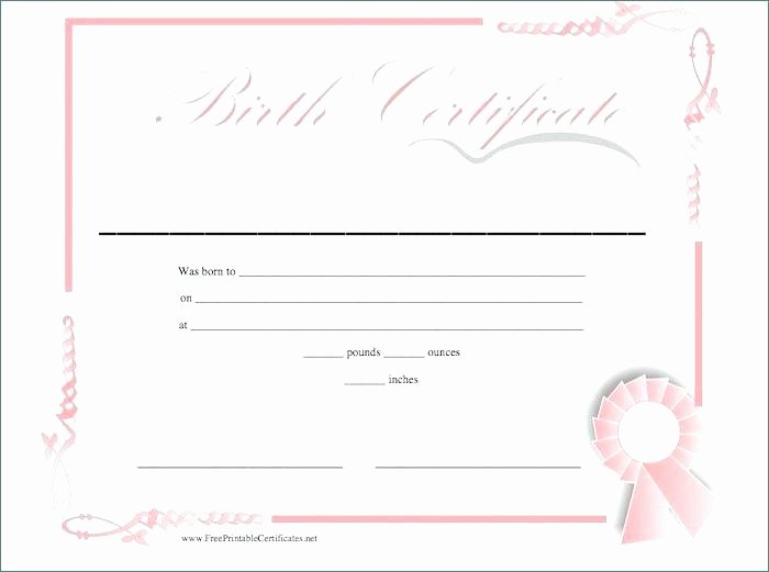 Mexican Birth Certificate Translation Template Pdf New Ethercard