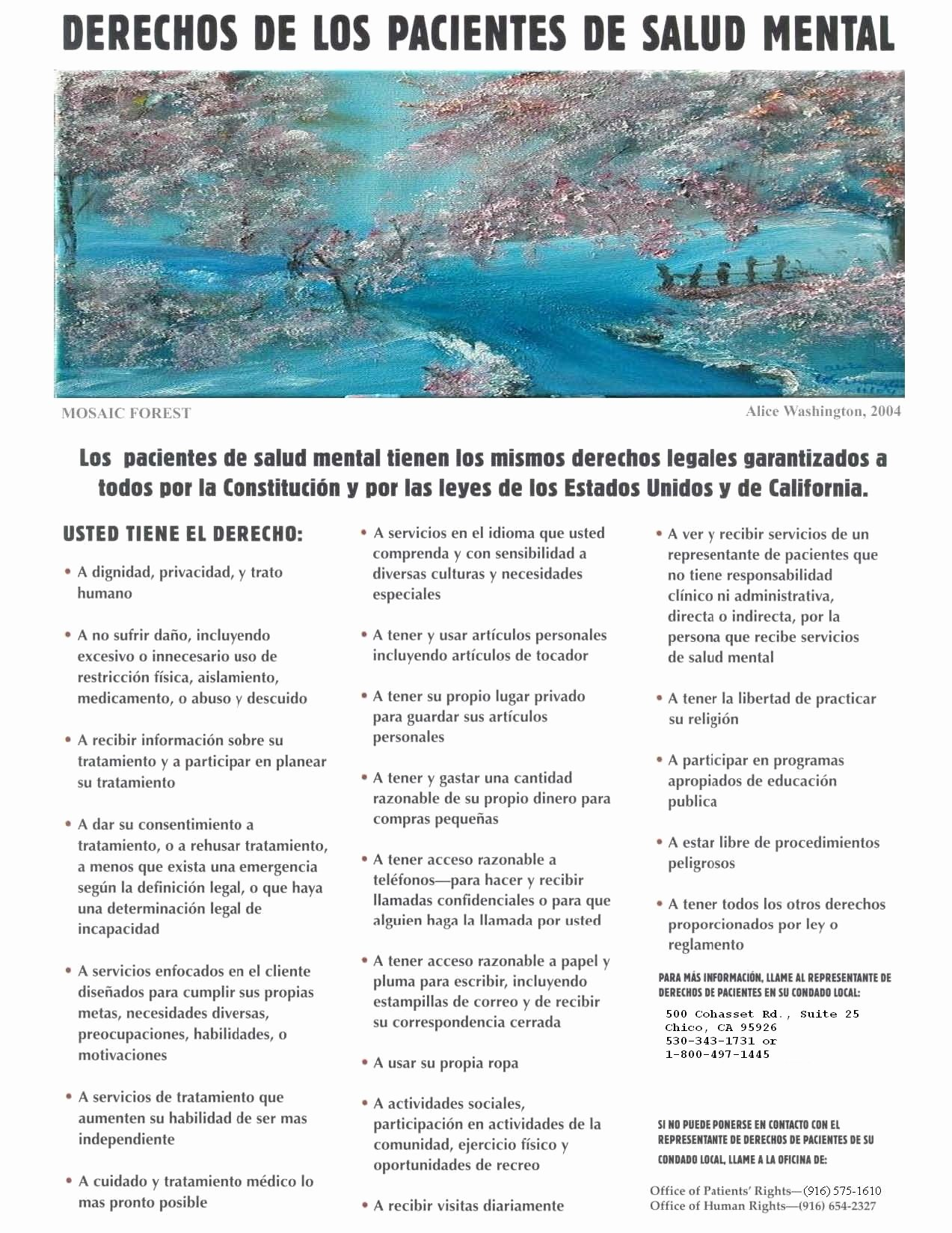 Notice Of Privacy Practices In Spanish Best Of Patients Rights Brochure