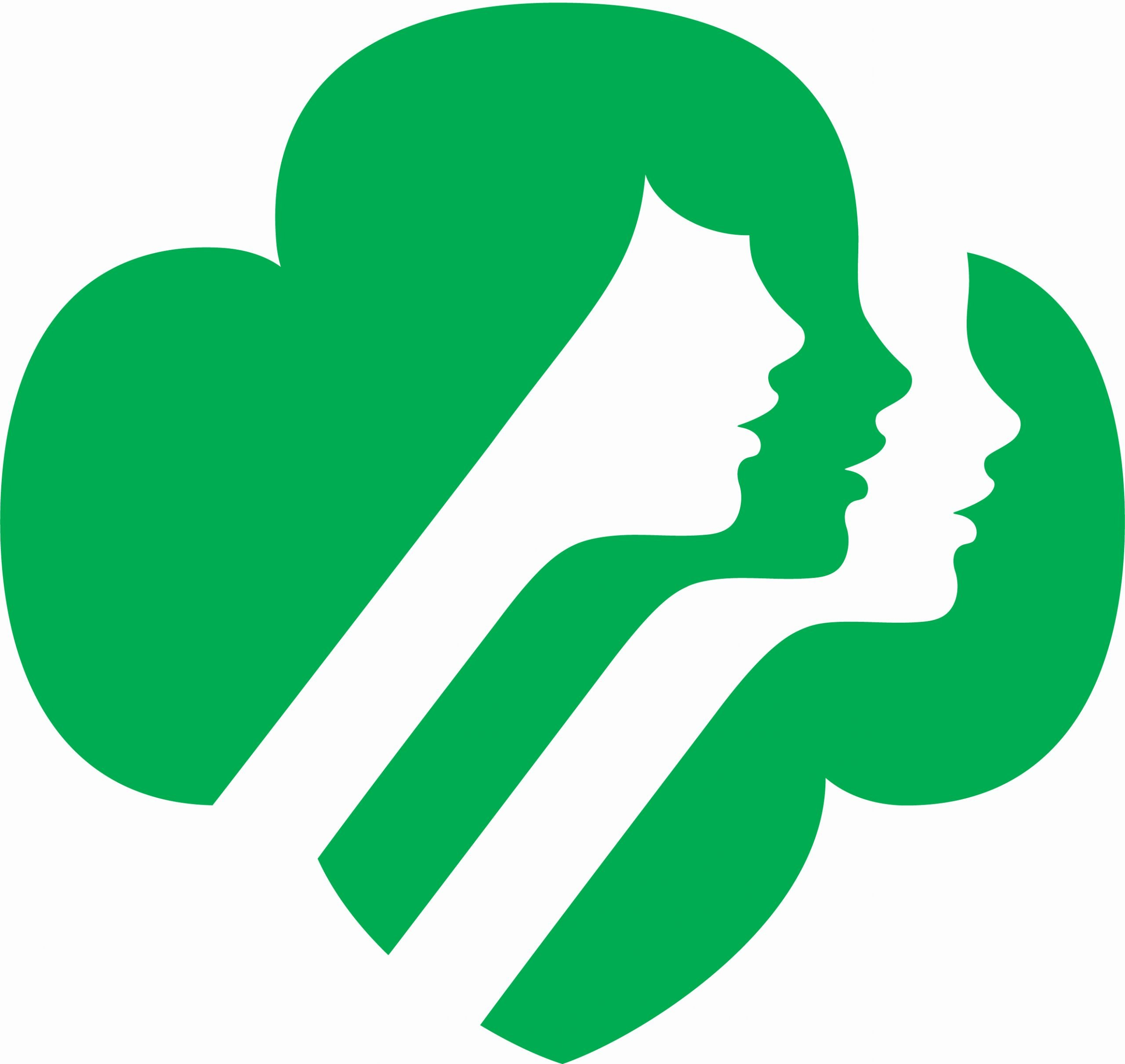 Nsc Cpr Course Certificate Template Fresh Girl Scouts Of Kansas Heartland